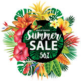 Summer sale design Royalty Free Stock Images