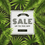 Summer sale, discount special offer banner template with coconut leaf background. Website advertising and promotion. Stock Photography