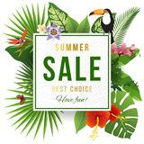Summer sale emblem wirh tripical plants. Summer sale emblem wirh tripical leaves and flowers. Vector illustration can be used for banner, invitation, poster Stock Photo