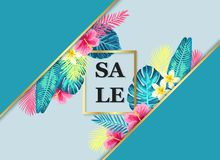 Summer sale exotic and tropic background design. Stock Images