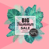 Summer sale exotic and tropic background design. Royalty Free Stock Photos