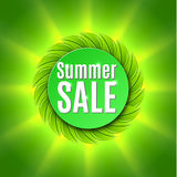 Summer sale  with fresh green leaf. Stock Image