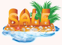 Summer sale with palm tree and seashells Stock Photography