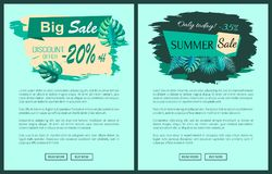 Summer Sale with 35 and 20 Percent off Promotional. Emblems on web posters. Summertime tropical plants leaves seasonal vector online pages banners set vector illustration