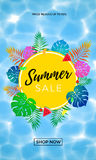 Summer sale poster of fruit, berry and palm leaf vector shopping banner Stock Image