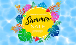 Summer sale poster of fruit, berry and palm leaf vector shopping banner Royalty Free Stock Images