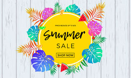 Summer sale poster of fruits and palm leaf vector online shopping banner Stock Photos