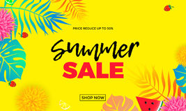 Summer sale price reduce shopping vector palm leaf banner Royalty Free Stock Image