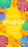 Summer sale price reduce shopping vector palm leaf poster Stock Image