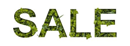 Summer sale. Real floral letters made of fresh grass. The effect of cut paper