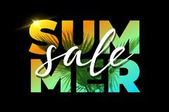 Summer Sale template with palm on black background. Vector illustration. royalty free stock image