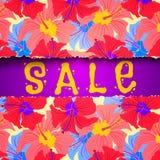 Summer sale Stock Photos