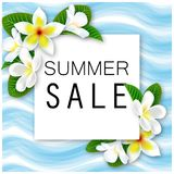 Summer Sale. Vector banner with Flowers and waves. For your design Royalty Free Stock Photos