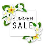 Summer Sale. Vector banner with Flowers and waves. For your design stock illustration