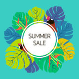 Summer sale Vector illustration Royalty Free Stock Photography