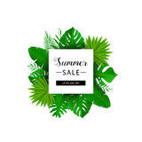 Summer sale. Vector illustration. Summer banner with 3d hawaiian leaf isolated on white background. Floral banner with border. Summer tropical leaves Royalty Free Stock Photos