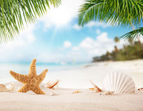 Summer sandy beach with blur ocean on background. Palm leaves on foreground Royalty Free Stock Photos