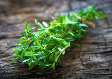 Summer savory (Satureja hortensis). On wooden background stock images