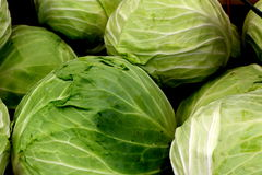 Summer Savoy Cabbage. Organic, fresh, summer savoy cabbage for sale at local grower's market Stock Photography
