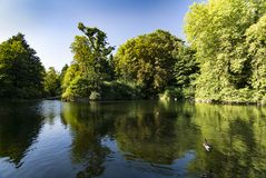 Lake and greenery at Christchurch park in Ipswich Suffolk Royalty Free Stock Photos