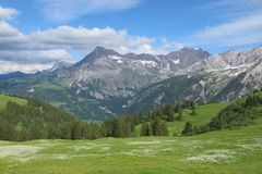 Summer scene in the Bernese Oberland Royalty Free Stock Photo