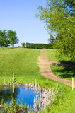 Summer scene. Edge of a pond in a park in England stock photos