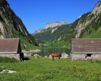 Summer scene at lake Fahlensee, Swiss Alps Stock Photo