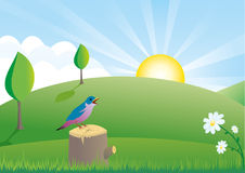 Summer scene with little bird. Log and flowers Royalty Free Stock Photo