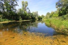 Summer scene on river royalty free stock image