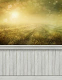 Summer scene wall background/backdrop Royalty Free Stock Photo