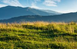 Summer scenery of grassy field in mountains. Mountain ridge with high peaks in the far distance. beautiful nature of Carpathians Royalty Free Stock Photography