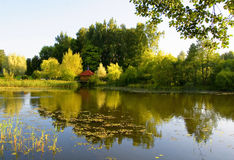 Summer scenery with lake in the autumn. With brilliant colorful reflection Royalty Free Stock Photo
