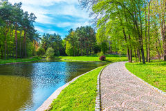Summer scenery of the park alley with lake Royalty Free Stock Photos