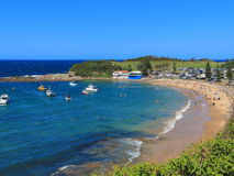 Summer scenery Terrigal beach Royalty Free Stock Images