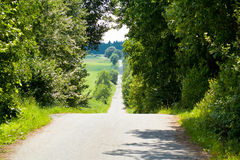 Summer scenery of a village road Stock Images