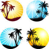 Summer scenes. Various summer scenes with palm trees Stock Photo