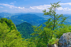 Summer scenic from The Three Crowns massif. Royalty Free Stock Image