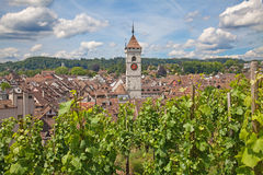 Summer in Schaffhausen Royalty Free Stock Photo