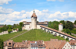 Summer in Schaffhausen Royalty Free Stock Images
