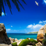 Summer sea Stock Photography