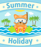 Summer sea background with cat Royalty Free Stock Photo
