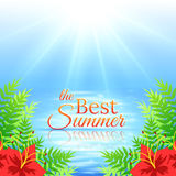 Summer Sea Background Stock Image