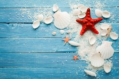 Summer sea background - shells and star Stock Images