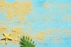 Summer sea background. Starfish and palm branch on a wooden blue background.  Stock Photography