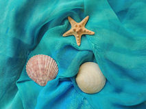 Summer sea composition on turquoise fabric. Royalty Free Stock Images