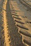 Summer sea, imprint of vehicles that clean the beach, vertical b stock photo