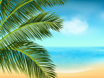 Summer sea and palm tree background landscape2 Royalty Free Stock Photos