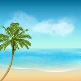 Summer sea and palm tree background Royalty Free Stock Image