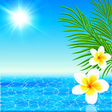 Summer sea with palms and flowers Royalty Free Stock Images