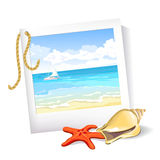 Summer sea photo, starfish, shell Stock Photos